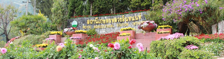 สถานีเกษตรหลวงอินทนนท์